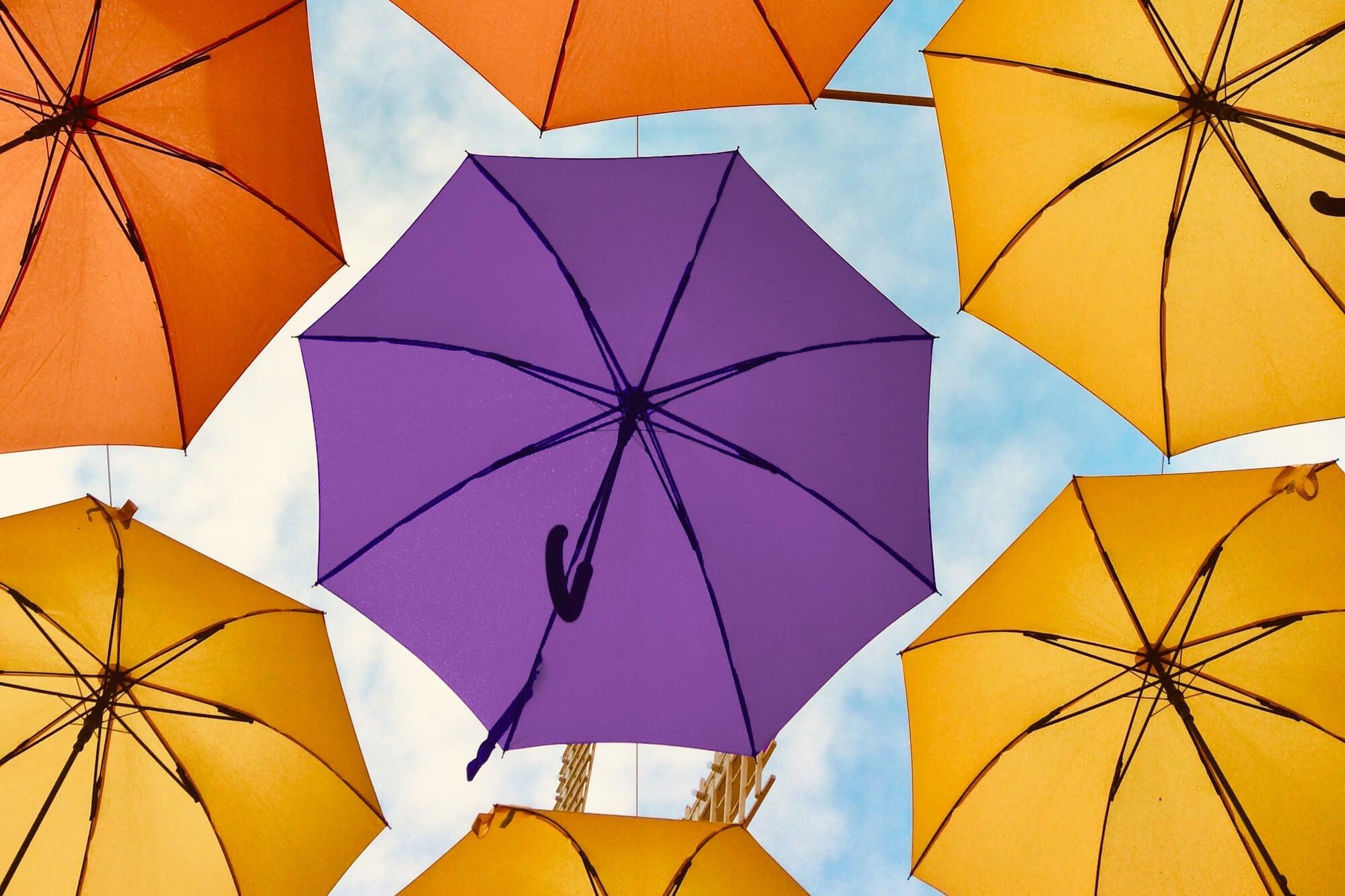 Umbrellas - one purple